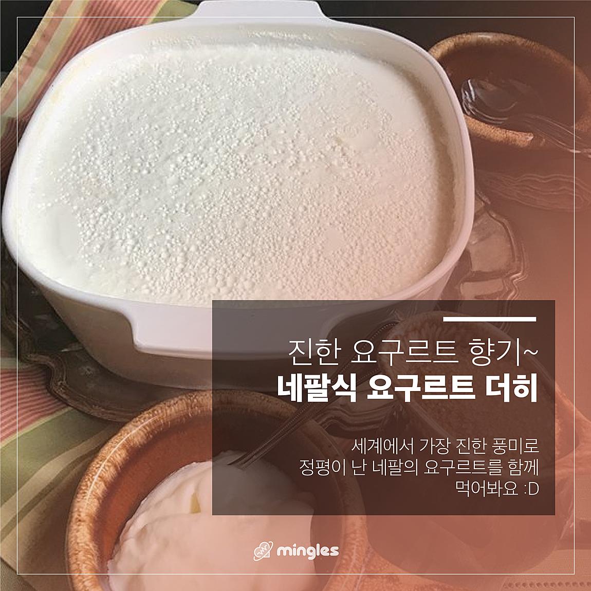 [비정상 수잔 × 룸비니 레스토랑] 네팔 달달 디저트 5종 쿠킹 + 먹파티 XD